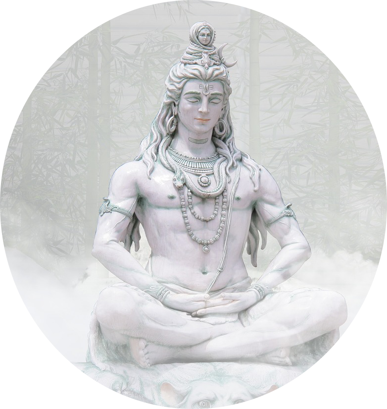 ShivaRaja                        meditatie